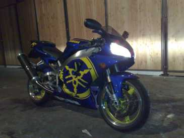 Photo : Propose à vendre Moto 1000 cc - YAMAHA - YZF R1