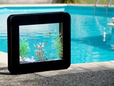 Chercher des petites annonces user ref slim for Aquarium cadre