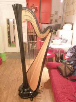 Chercher des petites annonces autres france page 2 - Housse de harpe celtique ...