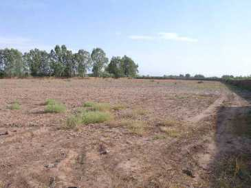Photo : Propose à vendre Terrain 250 000 m2