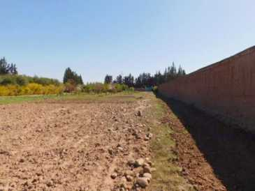 Photo : Propose à vendre Terrain 10 000 m2