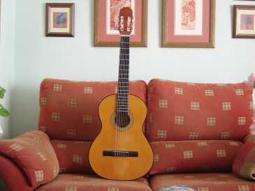 Chercher des petites annonces autres espagne page 3 - 100 pics solution instrument de musique ...