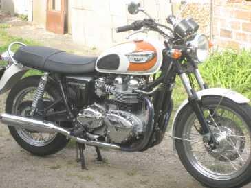 Lire Une Petite Annonce Propose à Vendre Moto 21889 Cc Triumph